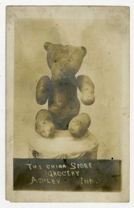 Teddy Bear Postcard
