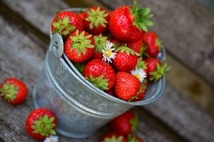 strawberries-3431122_1280.jpg